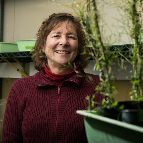 Plant Biochemist is UC Davis Top Teacher