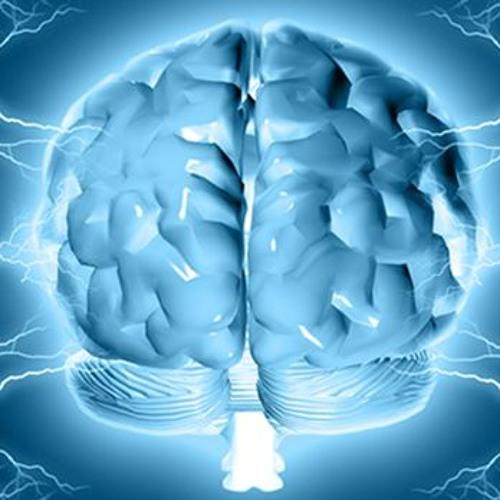 Cortyx Clarity - Enhances The Memory Power