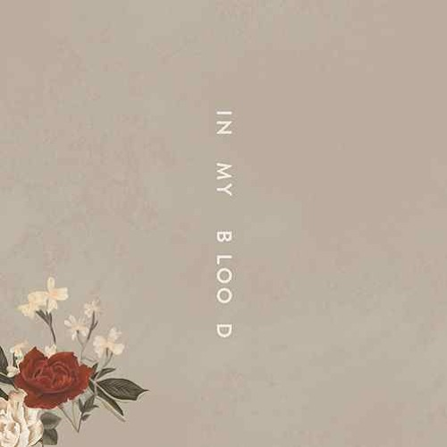 Download Shawn Mendes - In My Blood (Leroy Sanchez Cover)