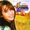 Cover: Rockstar - Hannah Montana