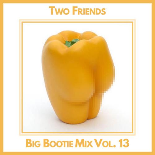2F Big Bootie Mix, Volume 13 - Two Friends