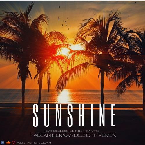 Cat Dealers, LOthief, Santti - Sunshine (Fabian Hernandez DFH Remix)