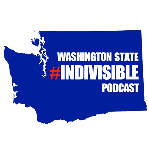 #59: Congressional Candidate Carolyn Long (WA-03); Indivisible's 8th District Endorsements