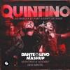 Dem Icky Thump Shots - The White Stripes Vs. Quintino & Alvaro (Dante Levo Mashup)