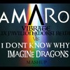 I Don't Know Why Vs Vibrate - Imagine Dragons vs Flux Pavilion (Moksi Remix) (Amaro Mashup)