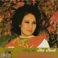 Nua Hon Thuong Dau - Thai Thanh [FLAC Lossless]