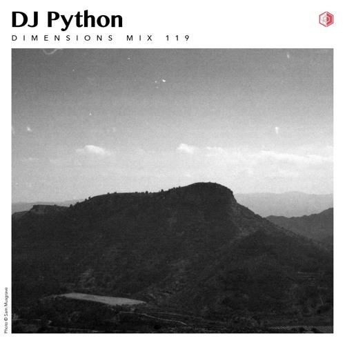 DIM 119 - DJ Python