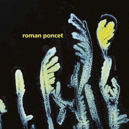 Roman Poncet - Gypsophila (FIGURELP02) preview