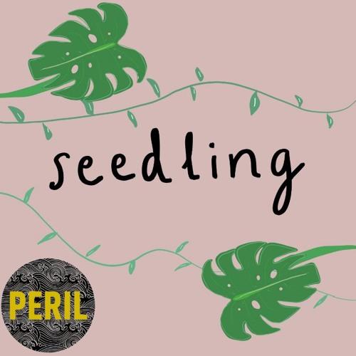 #8: seedling