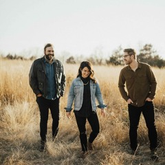 Cedar House - Let You Down