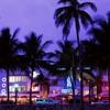 electronic - Florida Evening