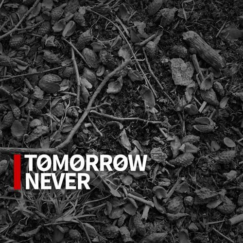 Villeneuve - Tomorrow Never (Dini Cover)