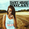 DANCE HOUES MIXCAST 042 - Best Remix's of Popular Songs Main Stage Festival Warmup [FREE DOWNLOAD]
