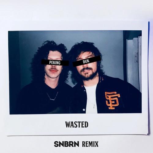 Peking Duk - Wasted (SNBRN Remix)