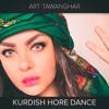 Kurdish Folk Dance Techno