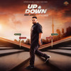 Up And Down - Deep Jandu
