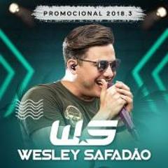 Wesley Safadão - Sofri em dobro