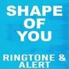 Shape of you verse ringtone (part 2)