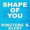 Shape of you chorus ringtone (part 1)