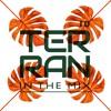 010 DJ Terran in the mix