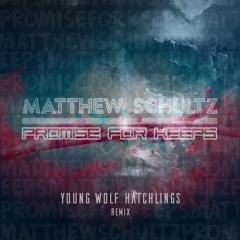 Promise For Keeps (YWH Remix) - Matthew Schultz & Young Wolf Hatchlings