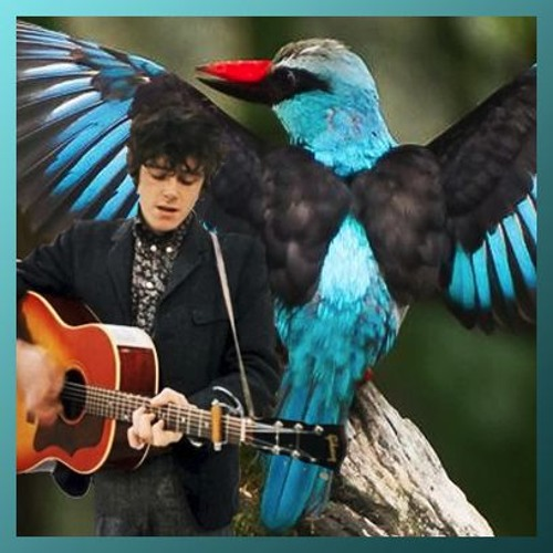 cover of 12 King Fishers by Donovan