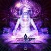 Download Shivatree - Space Baba (Original Mix) Mp3