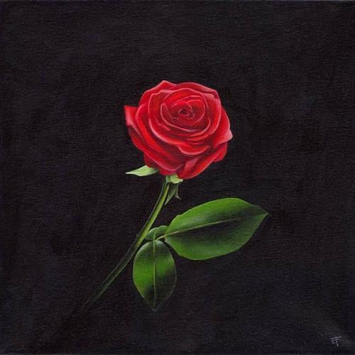 Moh Jo - Roses (ft. Micah Byrnes)