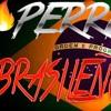 PERREO BRASILEÑO #8 🔥 - EXPLOTA TU JODA 2018 💣 - DJ SOGA