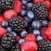 Healing Power of Wild Berries