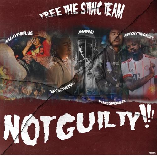 Free The Stinc Team