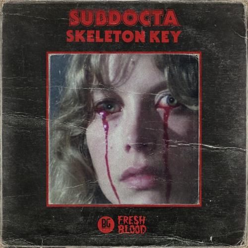 Subdocta – 'Skeleton Key' ile ilgili görsel sonucu