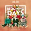 EXO-CBX (첸백시) _花요일 (Blooming Day)_ MV.mp3