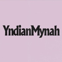 YNDIAN MYNAH - Steady Goes