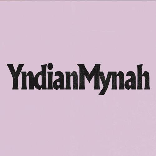 YNDIAN MYNAH - Steady Goes