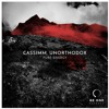 Unorthodox, CASSIMM  - I Like It When You (Original Mix)