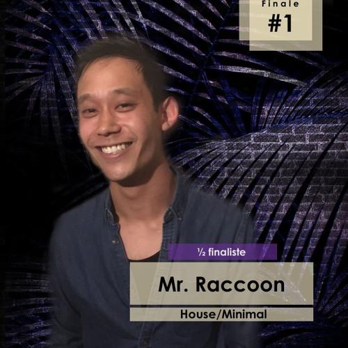 Demi - Finale #1 - Mr. Raccoon | Le Lab Festival 2018