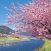 Spring Breeze Waltz mp3