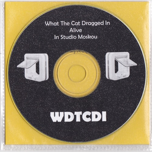 What The Cat Dragged In - Live in Studio Moskou