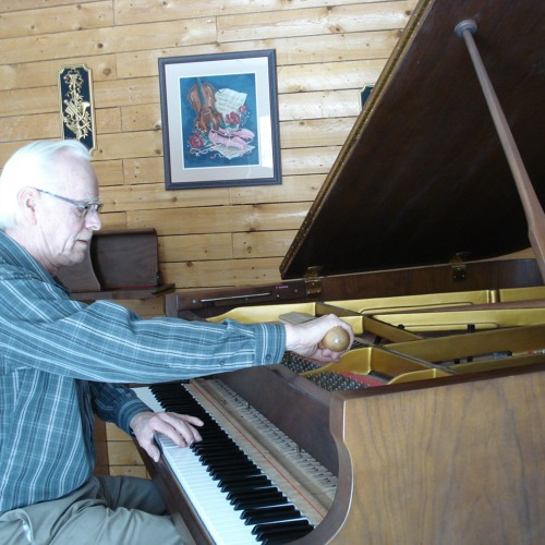 The Piano Tuner's Craft