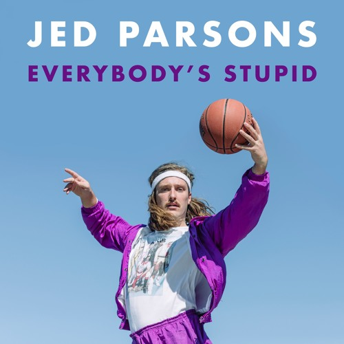 Everybody's Stupid
