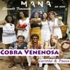 07 Ponto De Pomba Gira (Arreda Homem) - Cobra Venenosa Carimbó & Poesia
