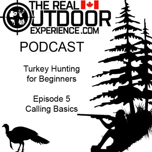 Turkey Hunting for Beginners - Episode 5 - Calling Basics
