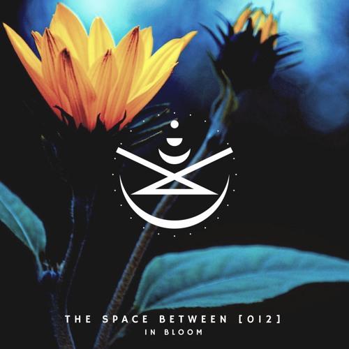 The Space Between [012] - In Bloom