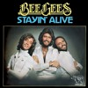 Bee Gee's - Stayin' Alive (Slim Tim Reboot)[FREE DOWNLOAD]