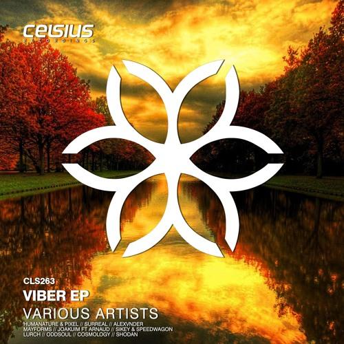 Joakuim Feat. Arnaud Ve - Hounddog (Celsius Recordings)