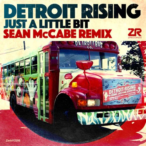 Detroit Rising - Little Bit (Sean McCabe Remix)