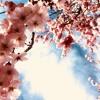 Nika Solce:  Pomlad (Impresija/ Srečko Kosovel)