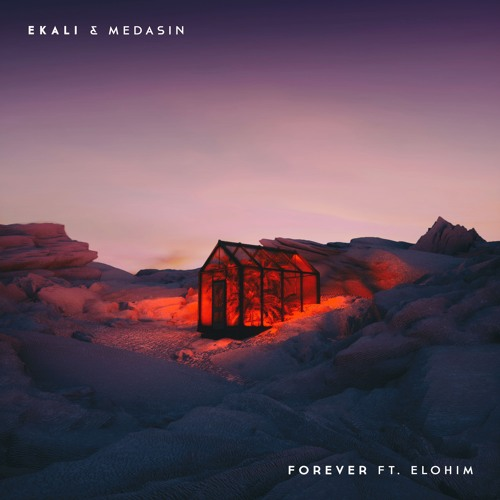 Ekali & Medasin - Forever ft. Elohim