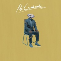 Mr Gabriel - Tambourine